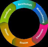 Kreislauf der Gleichgewichtsorientierung